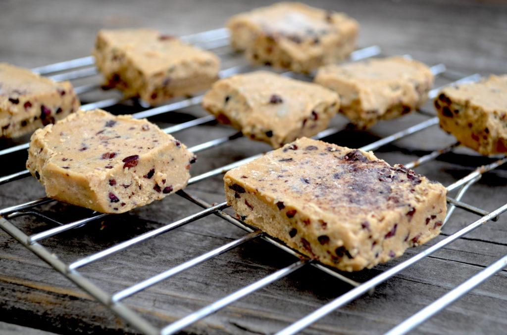 Chocolate Chip Paleo Sugar Free Protein Bars