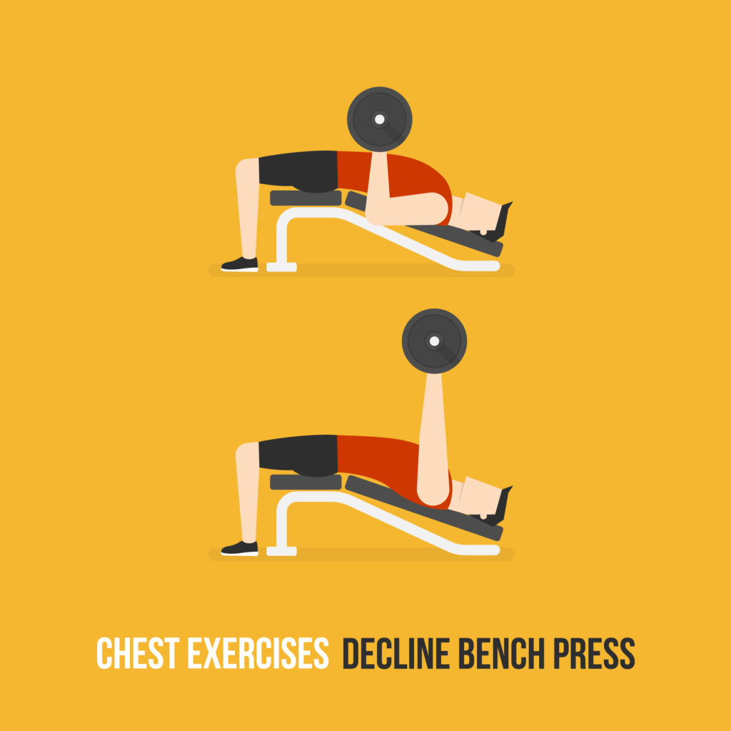 Decline Chest Exercises