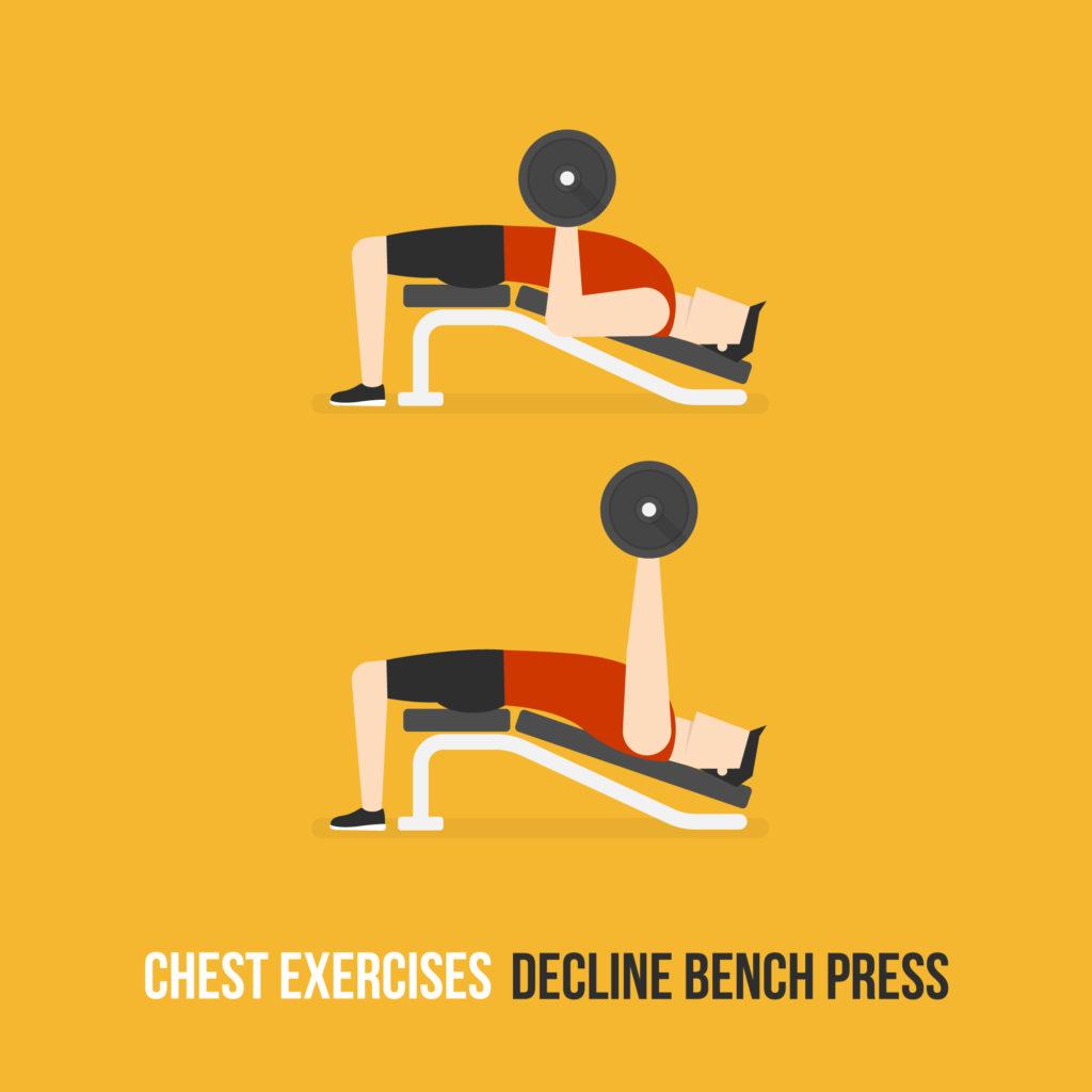 Decline Chest Exercises