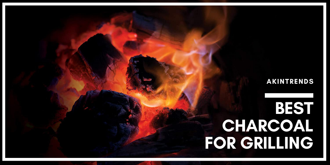 Best Charcoal for Grilling